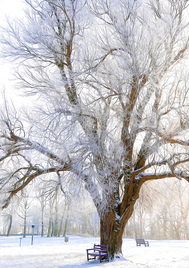 White Winter Tree Digital Art  - White Winter Tree Fine Art Print