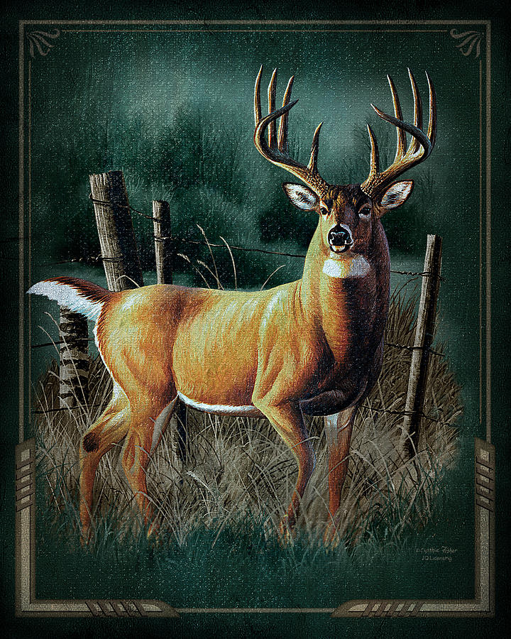 Whitetail Deer Painting  - Whitetail Deer Fine Art Print