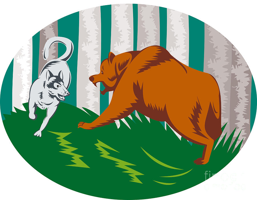 Wild Dog Wolf Fighting Grizzly Bear Digital Art
