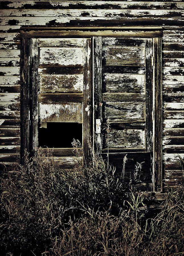 Wild Doors Photograph
