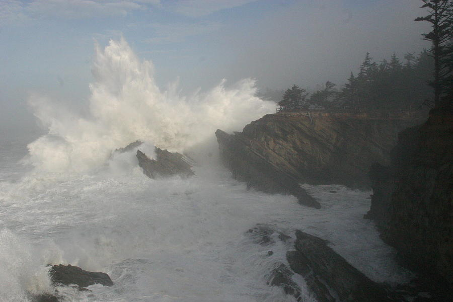 Wild Oregon Coast Photograph