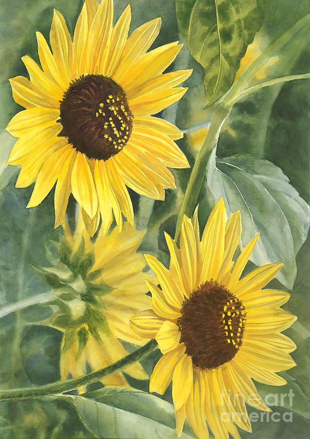 Wild Sunflowers Painting  - Wild Sunflowers Fine Art Print