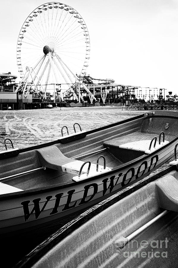 Wildwood Black Photograph  - Wildwood Black Fine Art Print