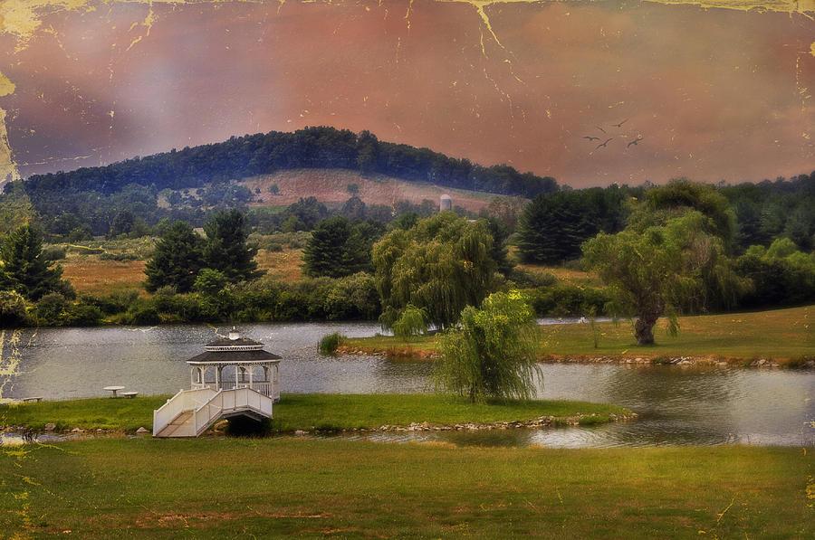 Willow Lake Series II  Photograph