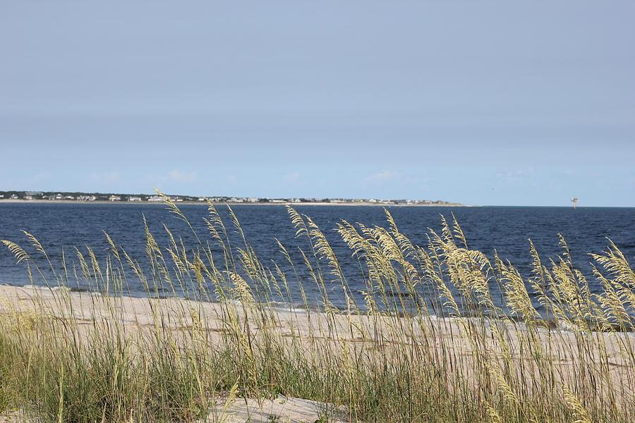 Wind Photograph
