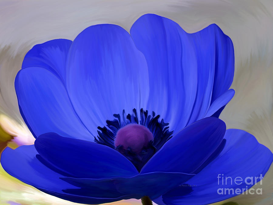 Windflower Photograph  - Windflower Fine Art Print