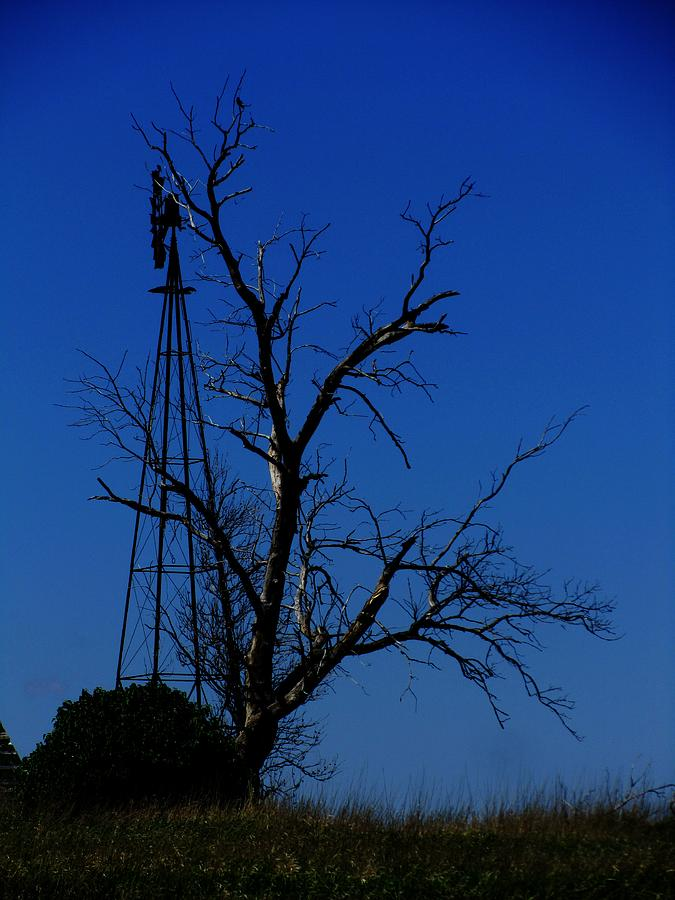 Windmill Blue Photograph