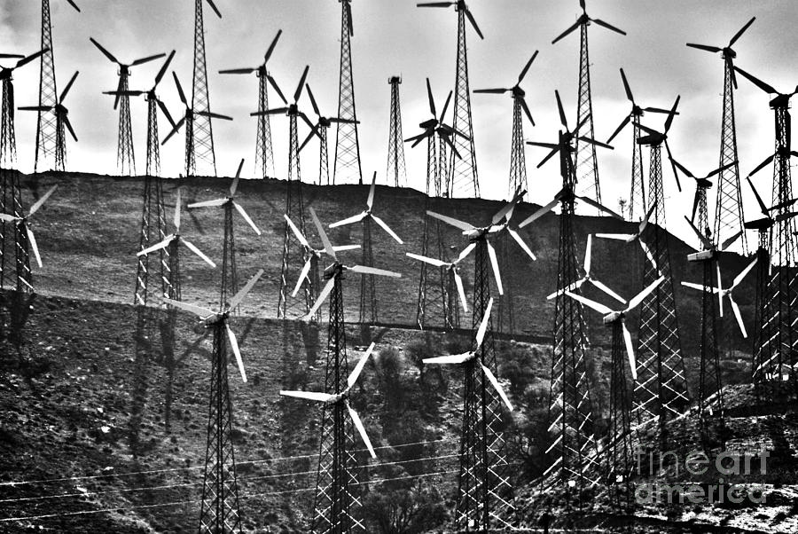 Windmills By Tehachapi  Photograph  - Windmills By Tehachapi  Fine Art Print