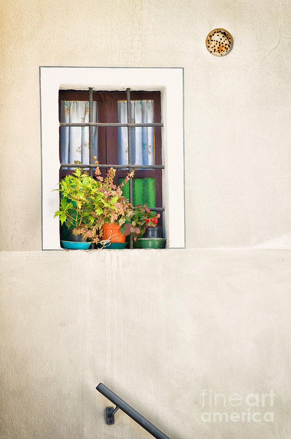 Window With White Frame And Vases Photograph  - Window With White Frame And Vases Fine Art Print