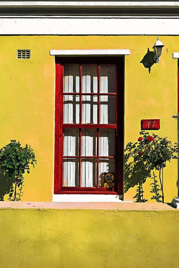 Windows Of Bo-kaap Photograph  - Windows Of Bo-kaap Fine Art Print