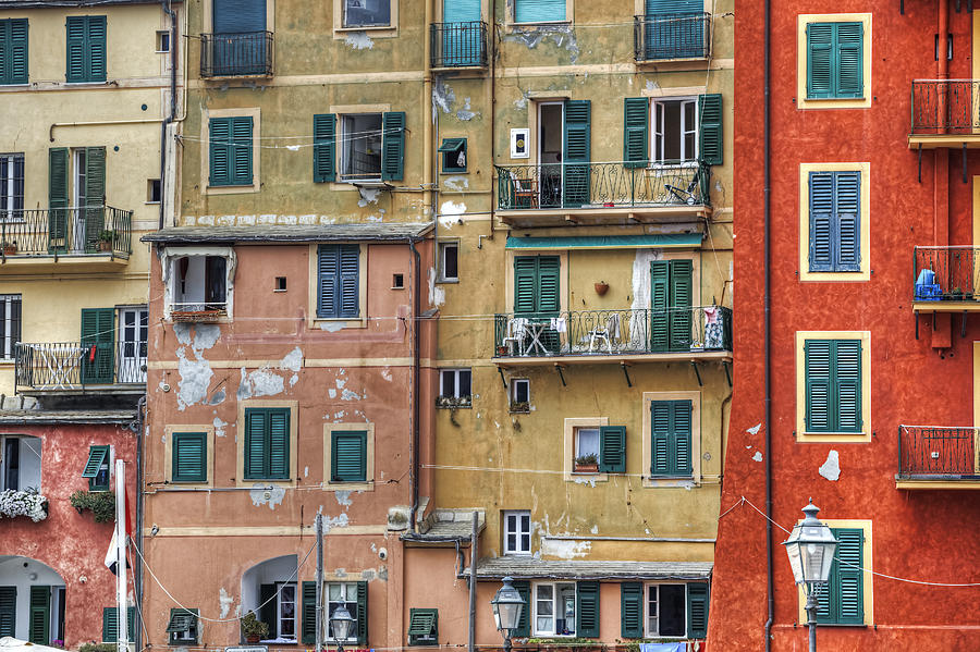 Windows Of Camogli Photograph  - Windows Of Camogli Fine Art Print
