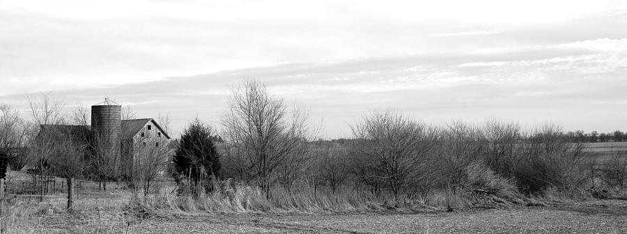 Windswept Heritage Photograph