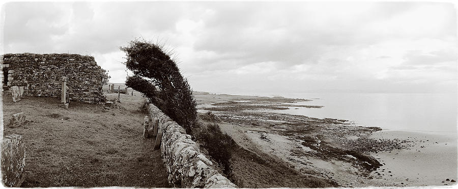 Kintyre Photograph - Windswept Machrihanish by Jan W Faul