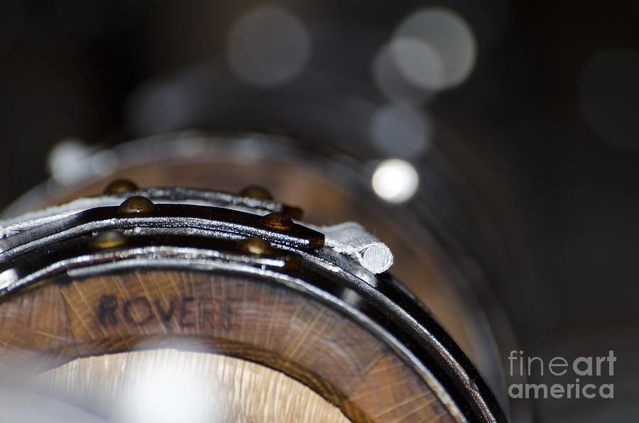 Wine Barrels In Oak Photograph