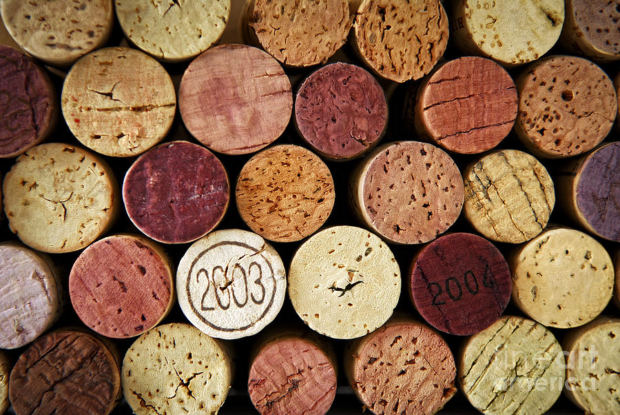 Wine Corks Photograph  - Wine Corks Fine Art Print