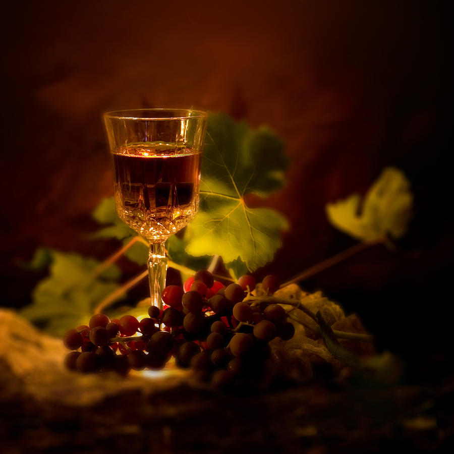 Wine Glass And Grapes Photograph