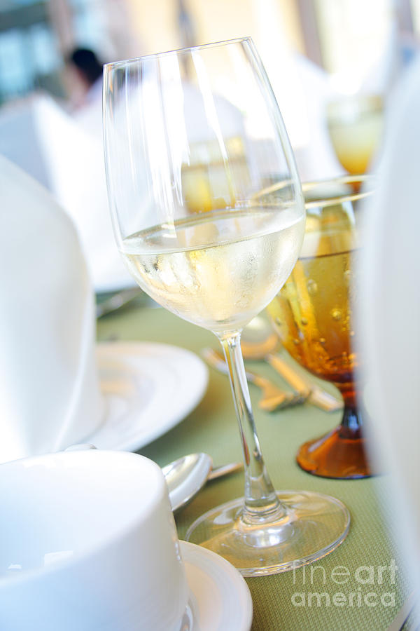 Wineglass Photograph  - Wineglass Fine Art Print