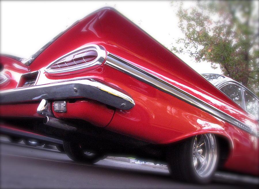 Winged Impala Photograph