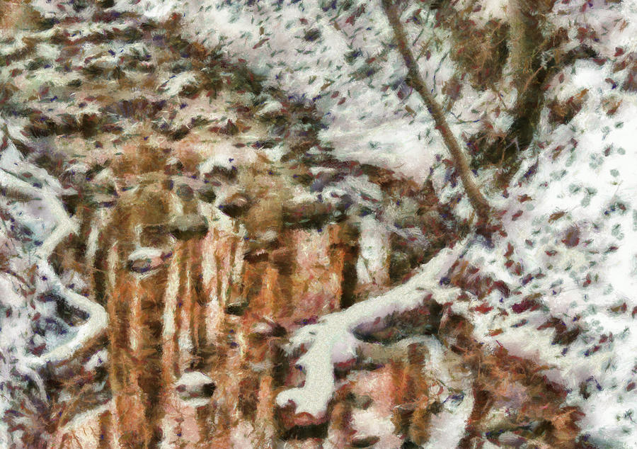 Winter - Natures Harmony Painted Photograph  - Winter - Natures Harmony Painted Fine Art Print