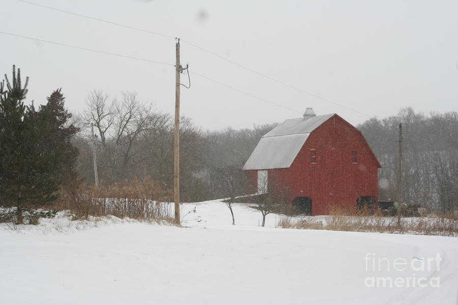 Winter Barn Scene  Photograph