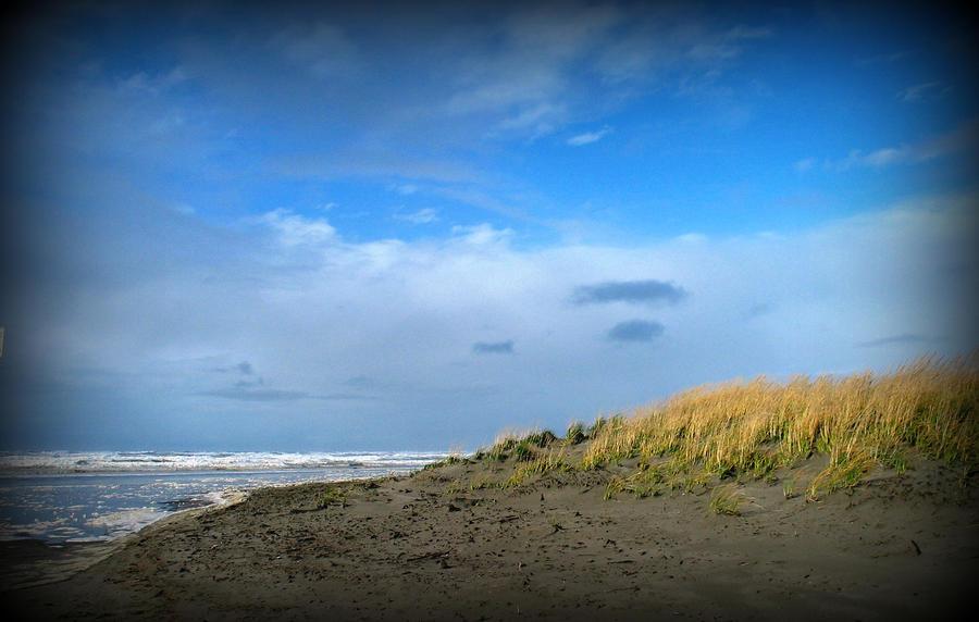 Winter Beach Photograph