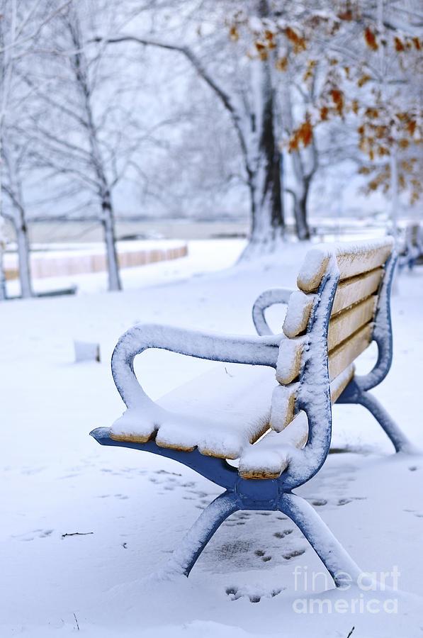 Winter Bench Photograph