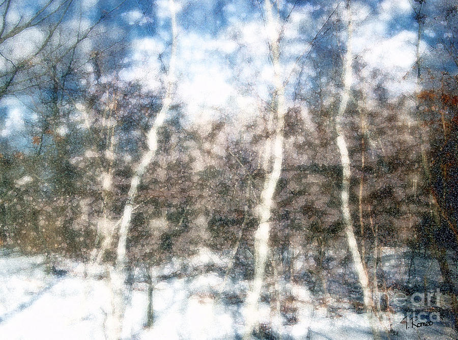 Winter Birch Digital Art  - Winter Birch Fine Art Print