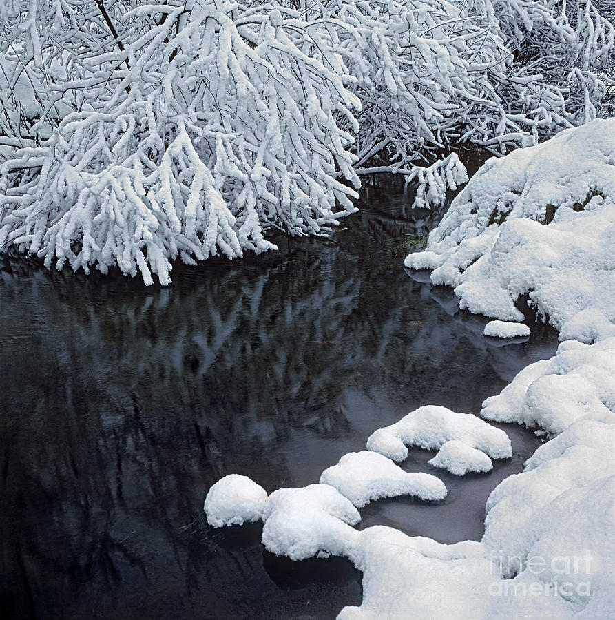 Winter Brook Photograph  - Winter Brook Fine Art Print