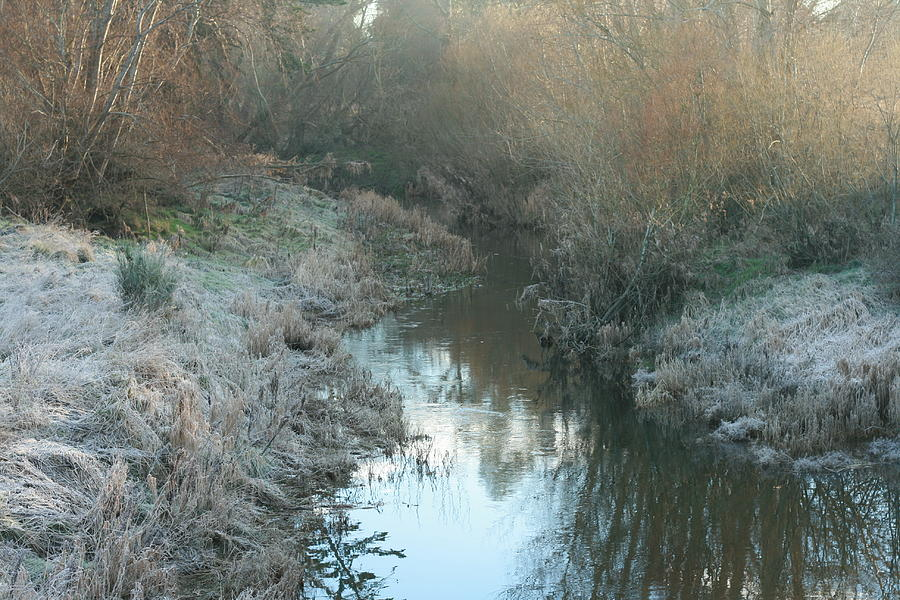 Winter Creek Photograph