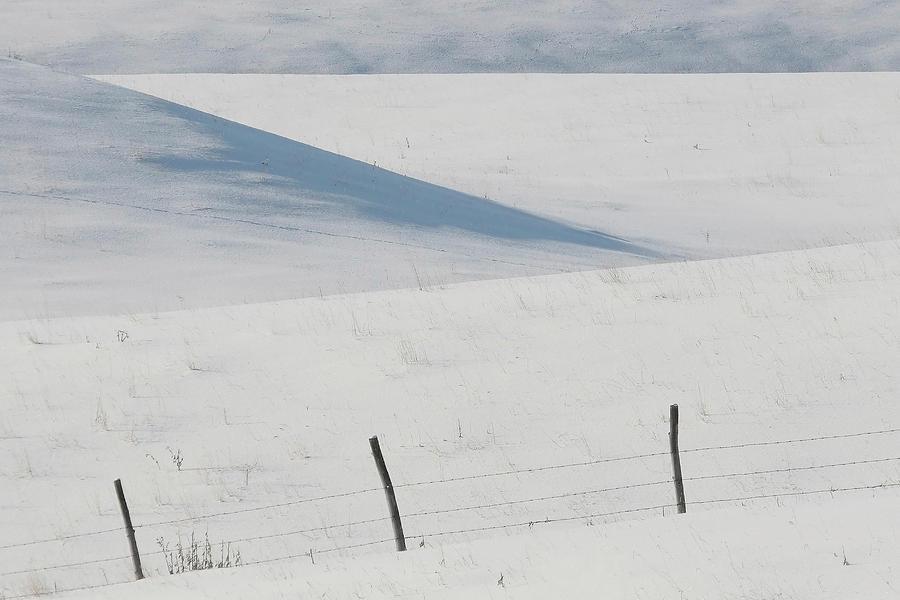 Winter Day On The Prairies Digital Art