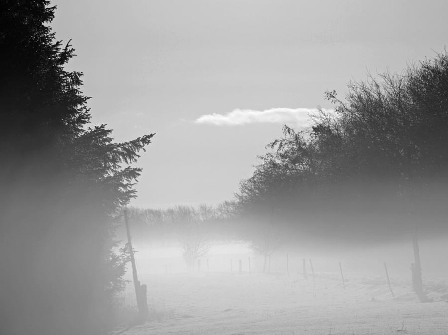 Winter Haze Photograph