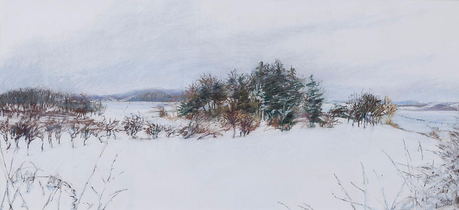 Winter In Ipswich Ma Pastel  - Winter In Ipswich Ma Fine Art Print