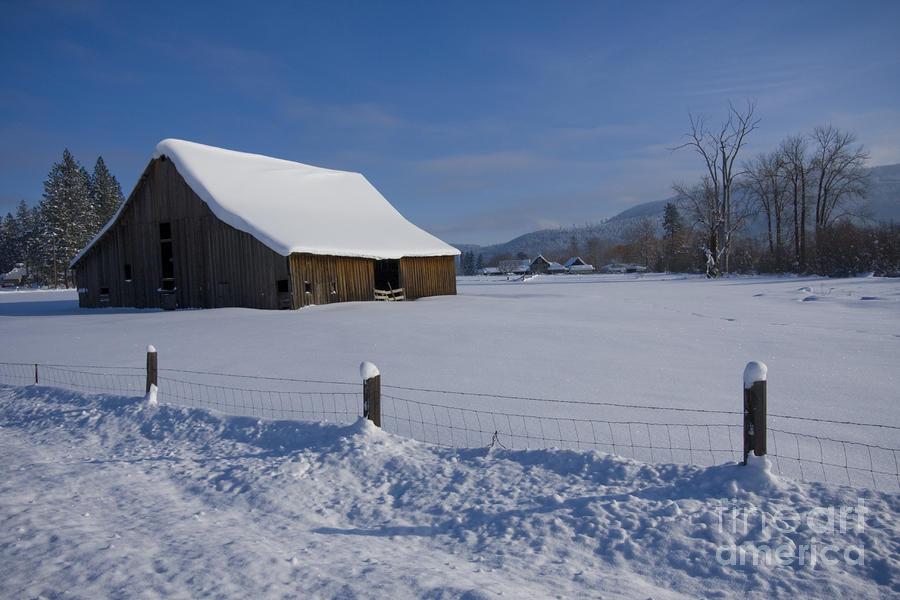 Winter Meadow Photograph - Winter Meadow Fine Art Print