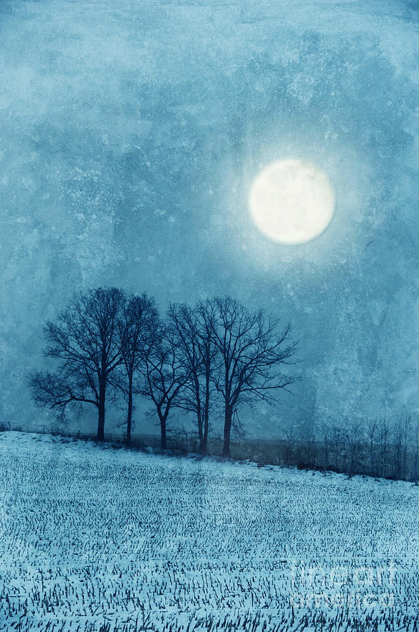 Winter Moon Over Farm Field Photograph