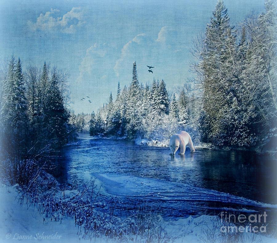 Winter Paradise Photograph