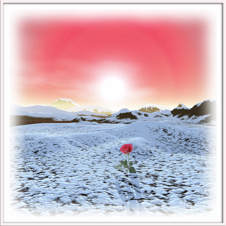 Symbolic Art Digital Art - Winter Rose by Harald Dastis