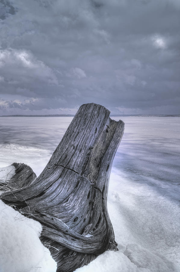 Winter Shore Photograph