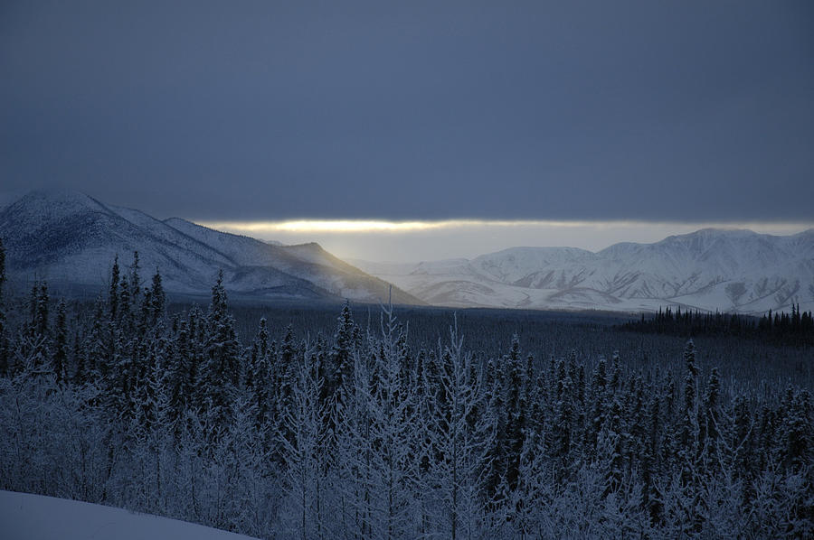 Winter Sun Alaska Photograph