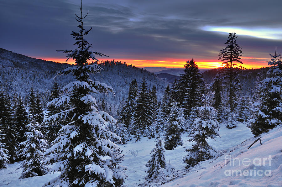 Sunset Photograph - Winter Sunset by Ionut Hrenciuc