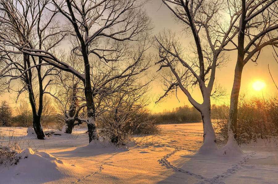 Winter Sunset Photograph  - Winter Sunset Fine Art Print