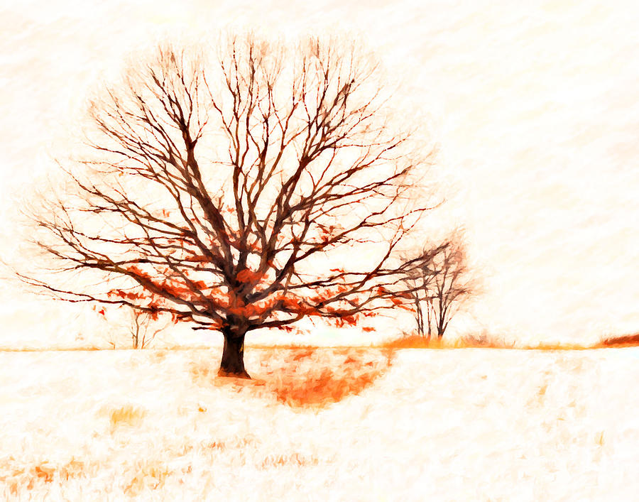 Winter Tree Digital Art  - Winter Tree Fine Art Print