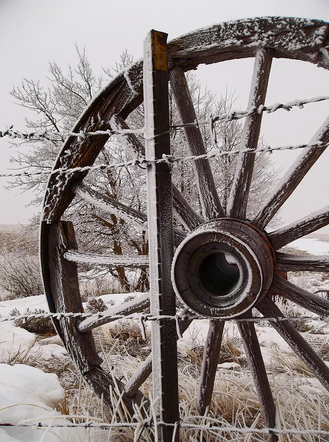 Wyoming Photograph - Winter Wheel by Wesley Hahn