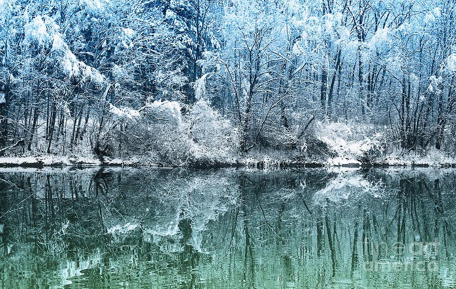 Winter Wonderland is a photograph by Jutta Maria Pusl which was ...