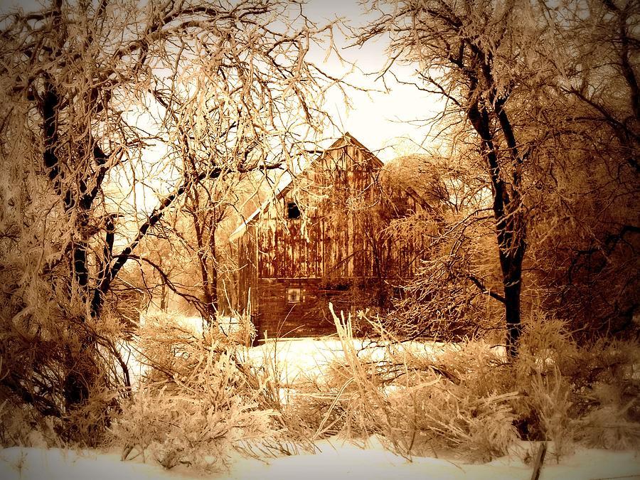Winter Wonderland Sepia Photograph