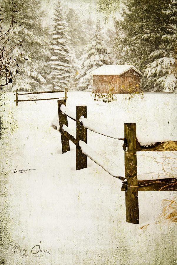 Winter Digital Art - Winters Beauty by Mary Timman