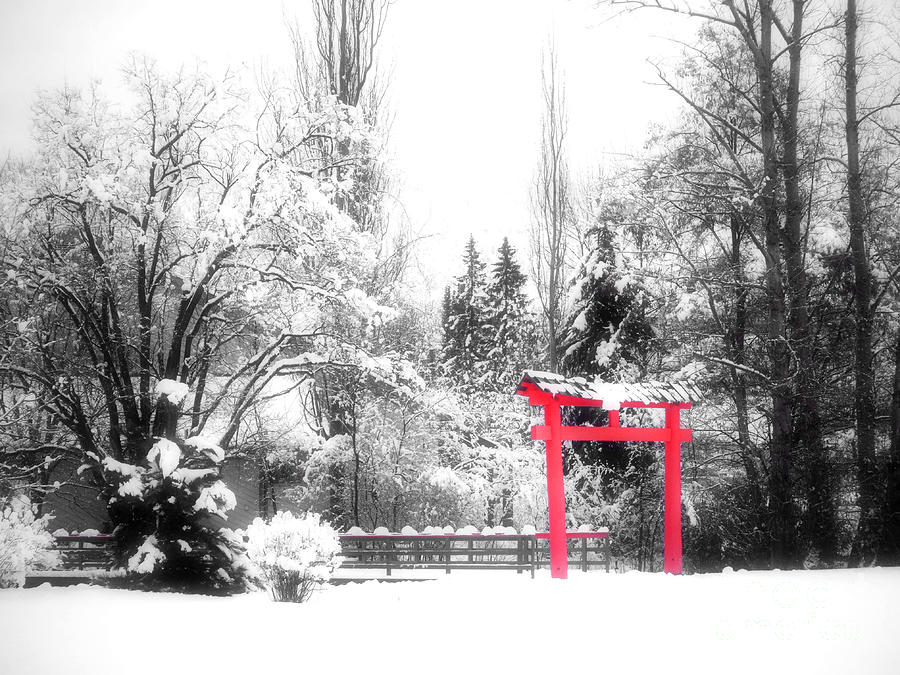 Winters Entrance Photograph  - Winters Entrance Fine Art Print
