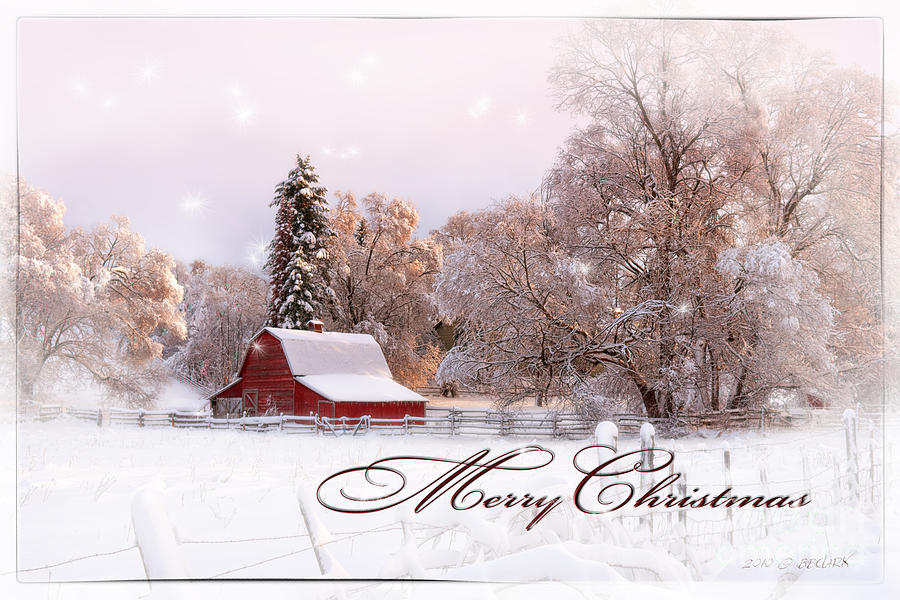 Winters Glow - Christmas Card Photograph