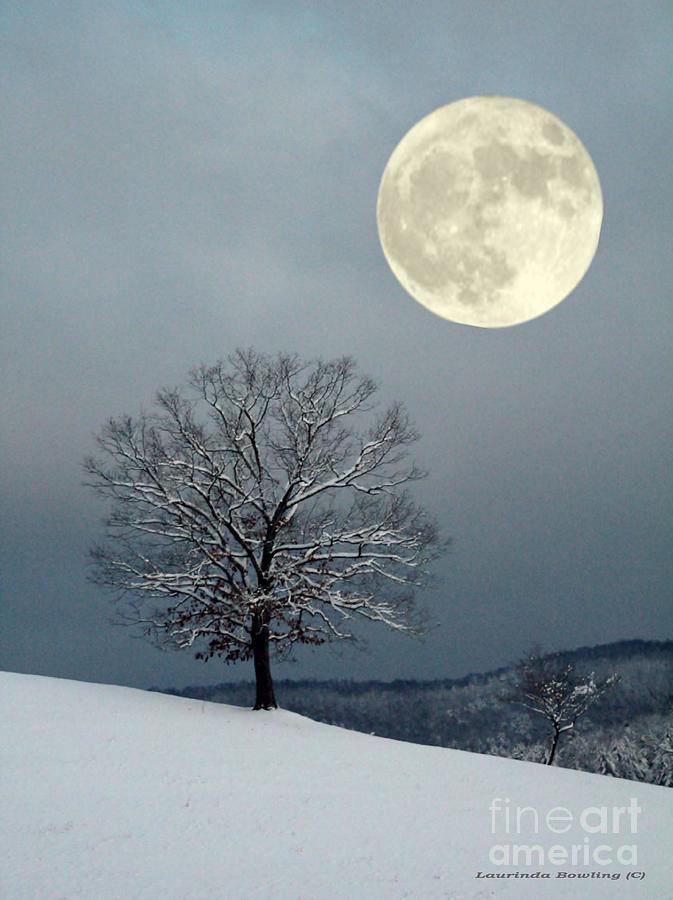 Winters Moon Photograph  - Winters Moon Fine Art Print
