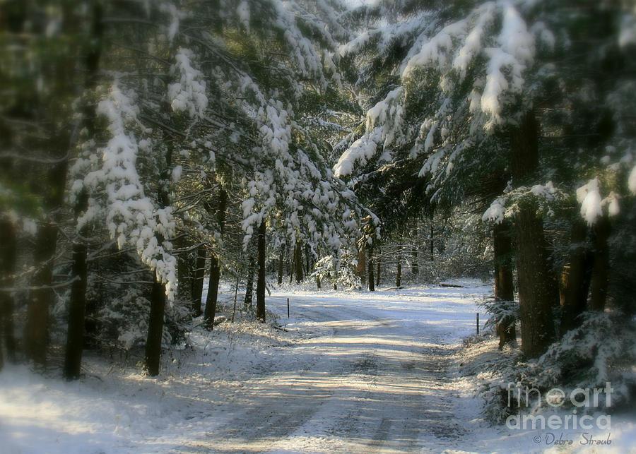Winter Photograph - Winters Tranquility by Debra Straub