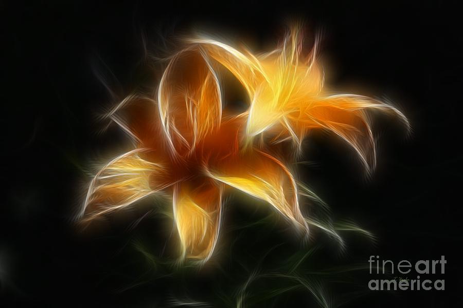 Wispy Lilies Digital Art